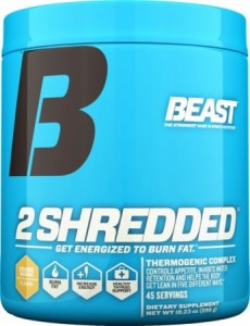 2 Shredded Thermogenic Fat Burner